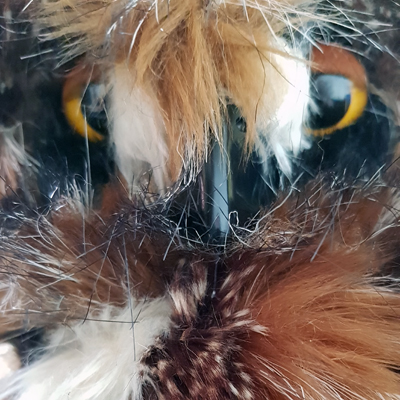 Marmalade Owl